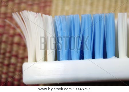 The Business End Of A Toothbrush Close Up