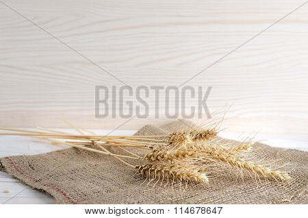 Spikelets Of Wheat Lie On Sacking
