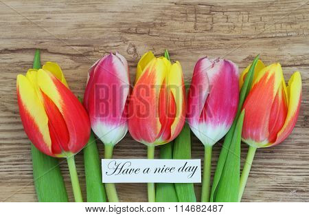 Have a nice day card with colorful tulips on wooden surface