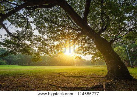 Landscape And Sunset