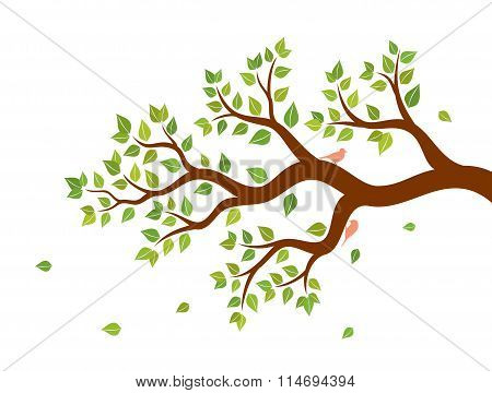 Vector illustration of tree branch with green leaves and two birds on white background. Wall sticker