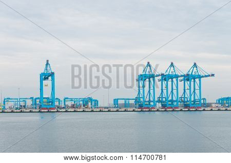 Row Of Harbor Cranes