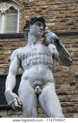 David Statue By Michelangelo Buonarroti, Florence, Italy