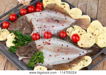 Raw Turbot Fish