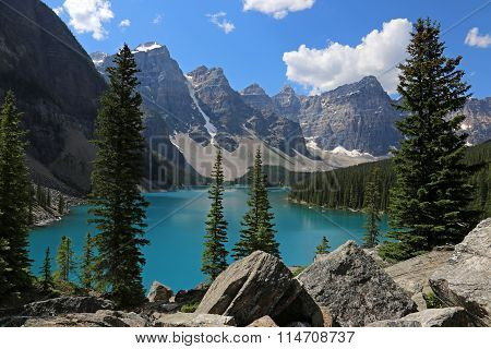 Lake Moraine Spruces