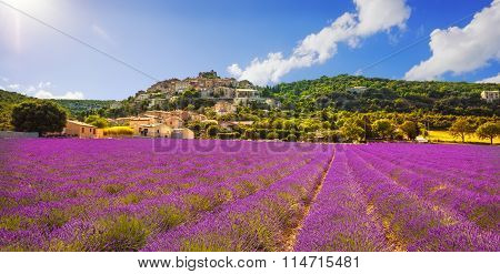 Simiane La Rotonde Village And Lavender Panorama. Provence, France