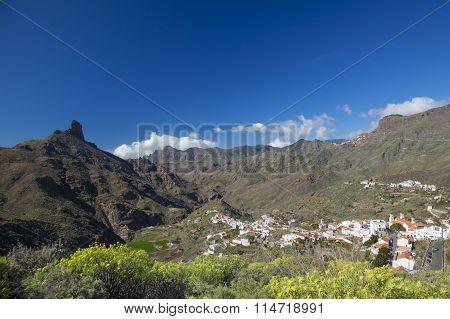 Gran Canaria, Caldera De Tejeda, January
