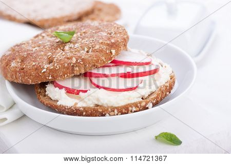 Sandwich with wholewheat bread cottage cheese radish and basil