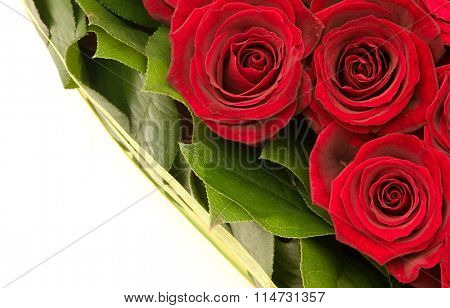 bouquet of roses, red roses