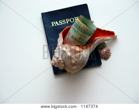 Sea Shell And Barbados Currency