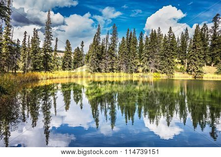 Warm autumn day in Jasper National Park in the Rocky Mountains. Adorable little lake. Coniferous forest is reflected in the mirrored water of lake