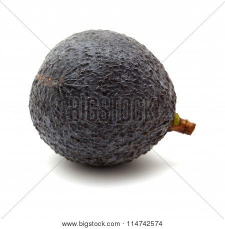 Round Dark Skinned Avocado Pear