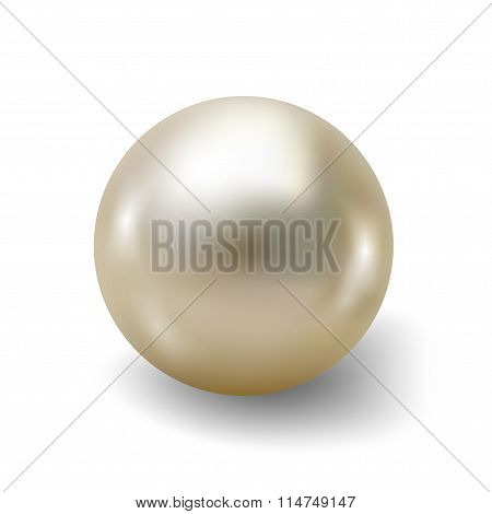 Pearl realistic isolated on white background