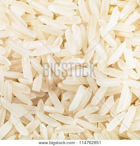 Long-grain Uncooked White Jasmine Rice