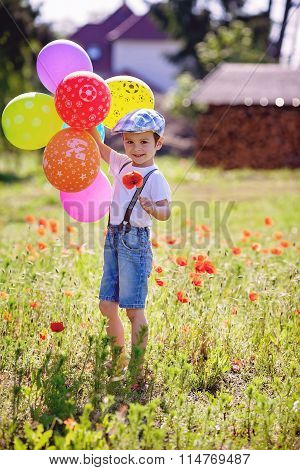 Cute Little Boy With Poppy Flower On Poppy Field With Balloons