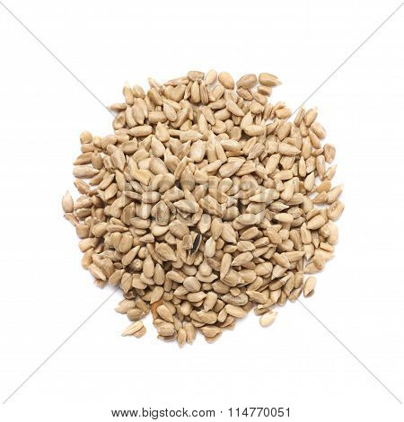 Pile of sunflower seeds isolated
