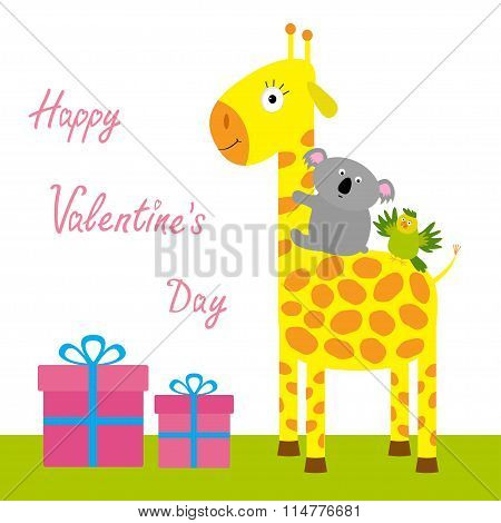 Happy Valentines Day. Love Card. Cute Giraffe, Koala And Parrot. Giftbox Set Baby Background Flat De