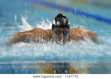 Swim Butterfly 1