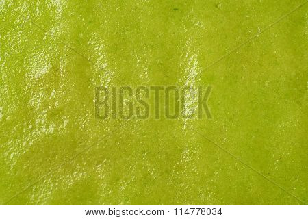 Surface coated with wasabi paste