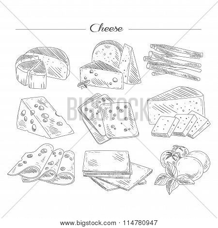 Types of Cheese. Handdrawn Set