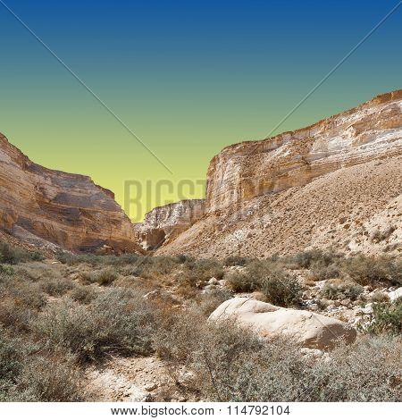 Desert At Sunset