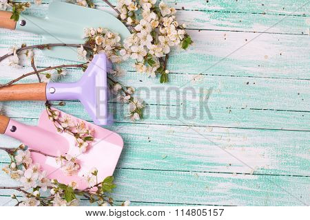 Flowering Branches Of Trees And Garden Tools For Kids On Turquoise Painted Wooden Planks.