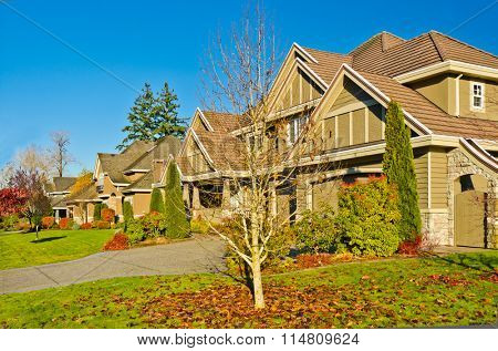 A perfect neighborhood. Houses with outdoor landscape in suburb at Fall in the north America