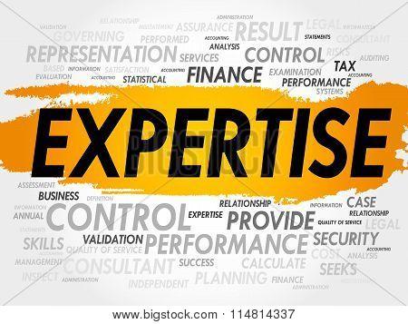 Expertise Word Cloud