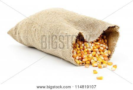 Bag Of Corn Kernels.