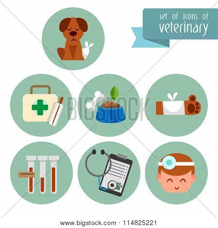 A set of flat icons of Veterinary. Flat illustration. Treatment of pets.