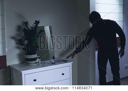 Criminal Robbing Luxurious Mansion