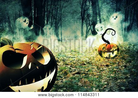 Pumpkin In The Foggy Forest