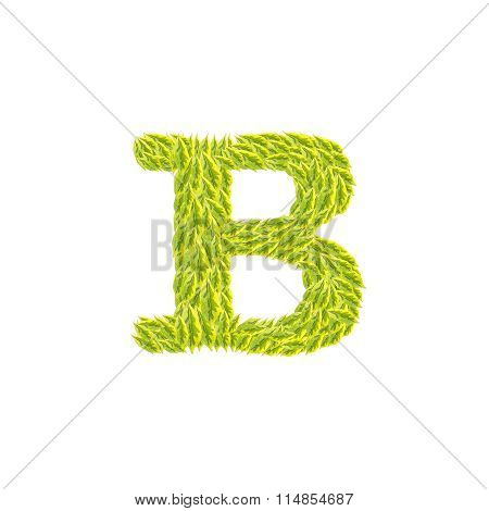 Closeup Pile Of Green Leaves In B English Alphabet Isolated On White Background