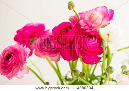Bouquet Of Colorful Persian Buttercup Flowers (ranunculus)