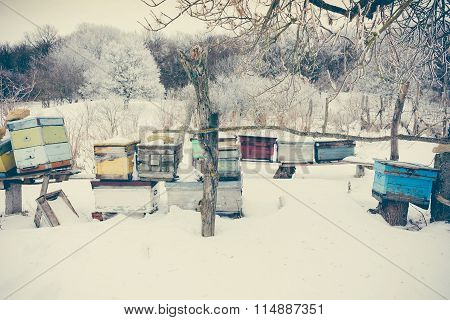 Apiary With Beehives In With Snow In Winter