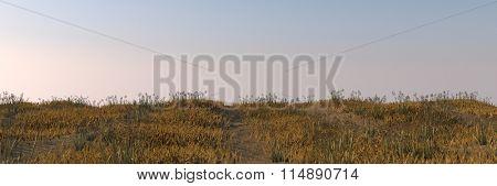 autumn field landscape