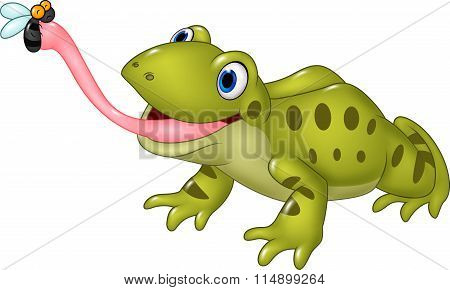 Cartoon funny frog catching fly isolated on white background