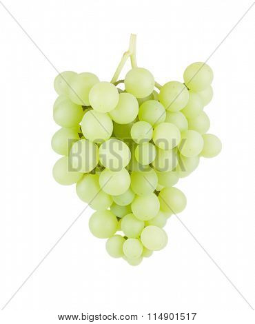 Bunch of white grapes. Isolated on white background