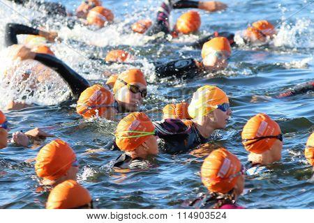 STOCKHOLM - AUG 23 2015: Group of female triathletes wearing orange bathing caps swimming at ITU World Triathlon event in Stockholm 2015