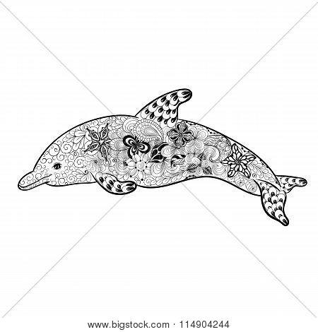 Dolphin Doodle Illustration