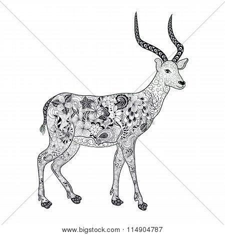 Antelope Doodle Illustration