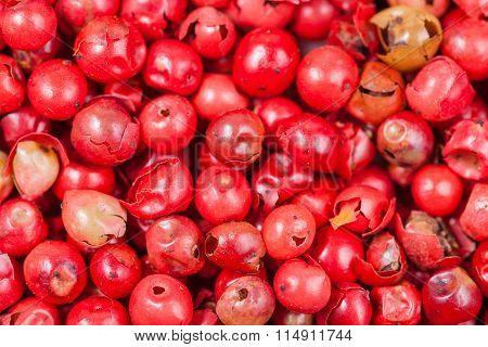 Red Pepper Peppercorns