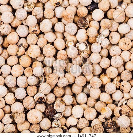 Dried White Pepper Peppercorns