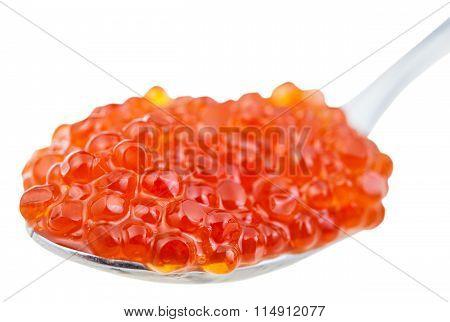 Spoon With Sockeye Salmon Red Caviar Isolated