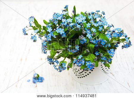 Forget Me Nots Flowers