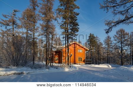 Bright Orange House In The Winter Forest