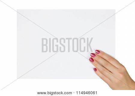Woman's Hand Holding A Blank Sheet Of Paper