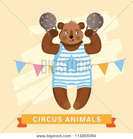 Circus Bear, vector animal series.