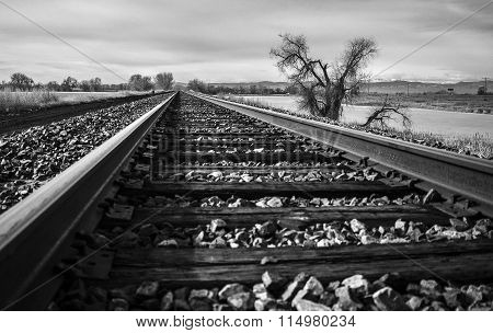Brooding Tracks