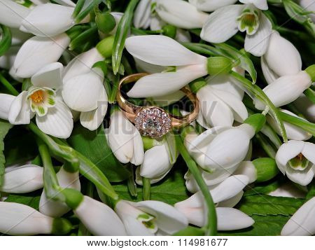 snowdrops and Golden ring with diamond
